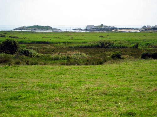 Rhoscolyn fields1