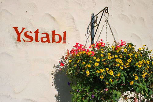 Y Stabl name and flowers